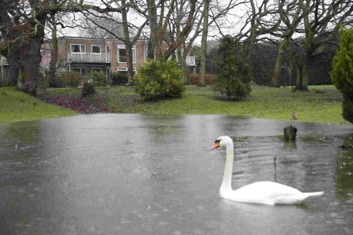 UPDATE: Christchurch council forced into U-turn and pledge to refund flood-hit residents for sandbags