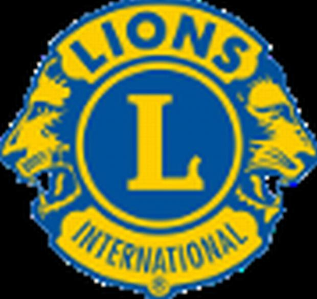Ringwood and Fordingbridge Lions Club appeal for swimmers for annual fundraiser