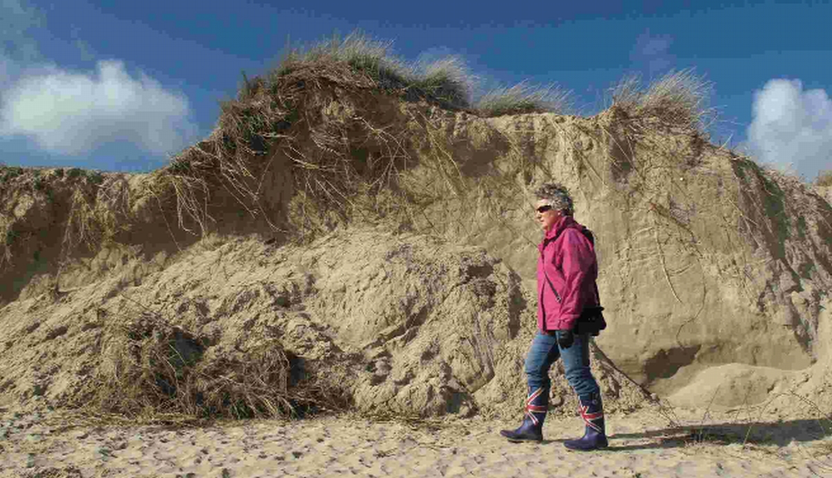'Mini-cliff' forms at Studland beach after storms roll back sands