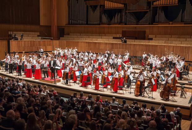 Talented musical youngsters needed to represent Dorset in the National Children's Orchestra