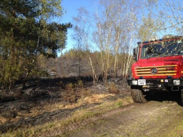 Fire at Moors Valley Country Park 'started deliberately'. Picture from DFRS
