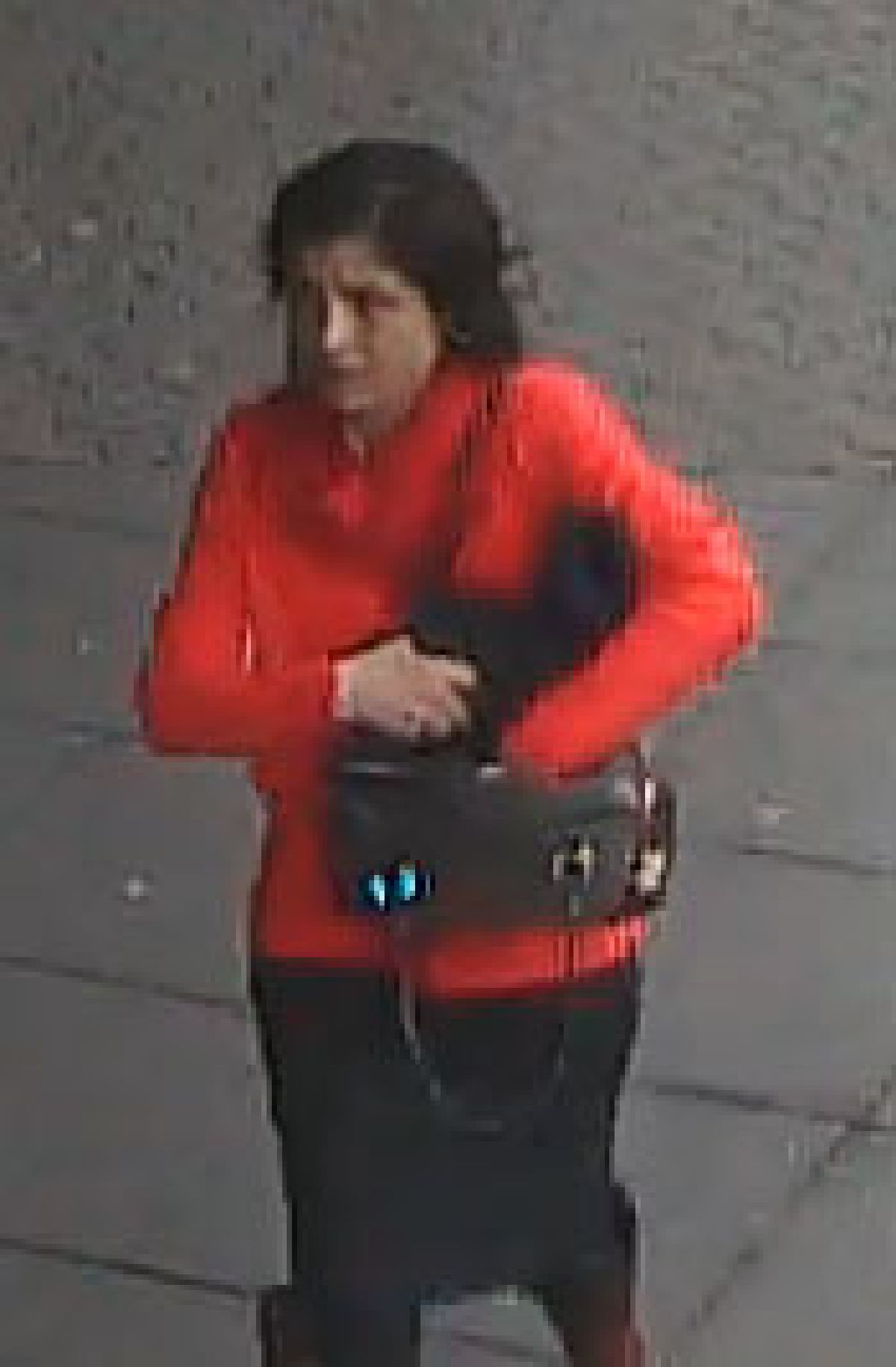 Appeal after handbag theft
