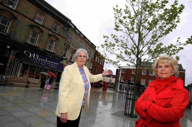 LOOKING BARE: Pamela and Pat with the solitary tree in Wimborne Square