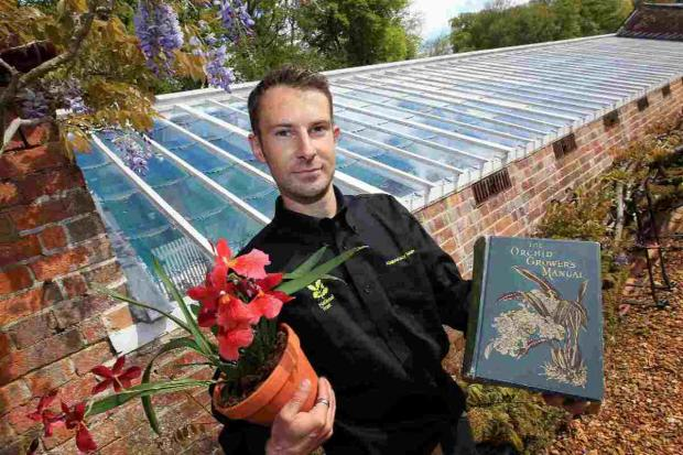 BOUQUET OF ORCHIDS: Head gardener Steve Candy at the restored orchid house