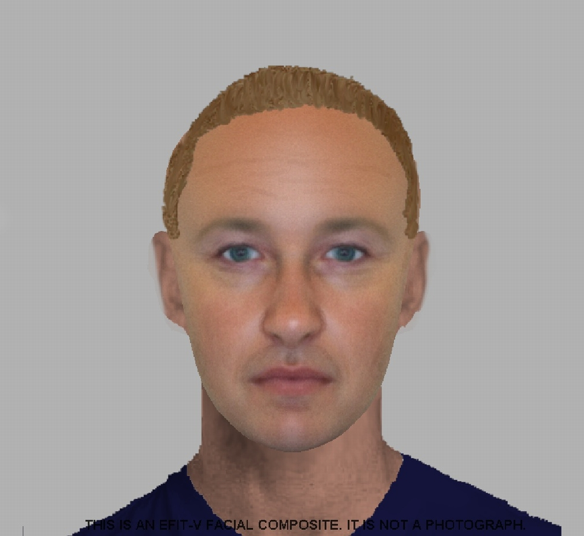 An e-fit image of the suspect.