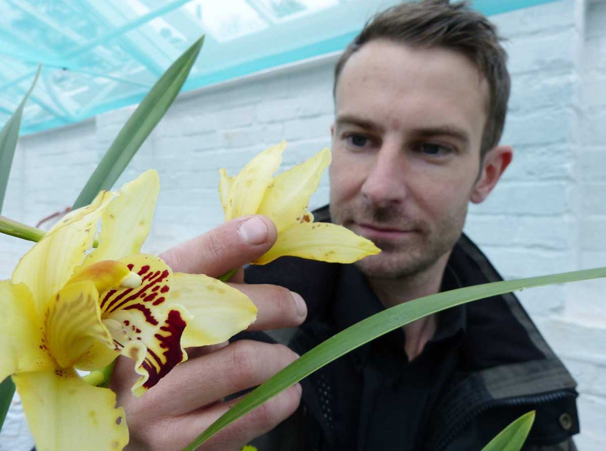 Head gardener Steve Candy in the new orchid house