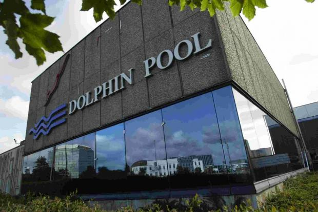 MAKING A SPLASH: Dolphin swimming poo