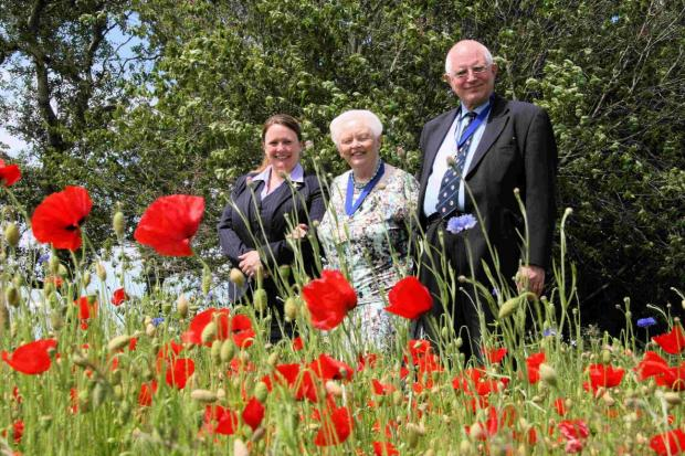 SEEING RED: Jo Medlow, funeral arranger at Co-operative Funeral Care in Bargates, Mayor of Christchurch Denise Jones and consort with poppies on the Stony Lane roundabout donated by  Co-operative Funeral Care