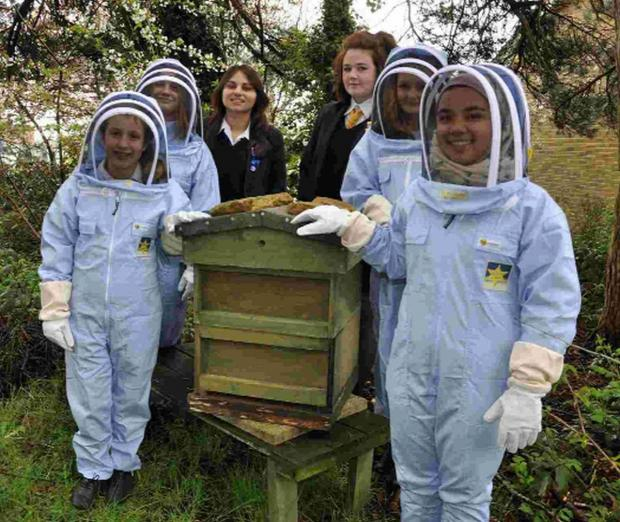 MONEY IN HONEY: Students Lucy Cox-O'Rourke, Danielle Noke, Maya Dixit, Anna-Louise Graham, Katie Butcher, and Edlina Prior