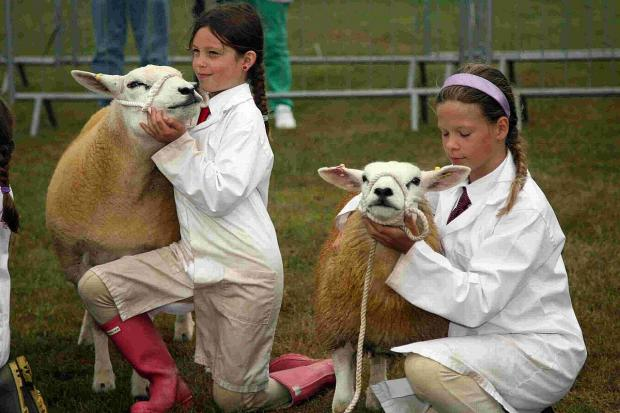 ANIMAL MAGIC: Contestants in last year's Young Shepherd of the Year competition