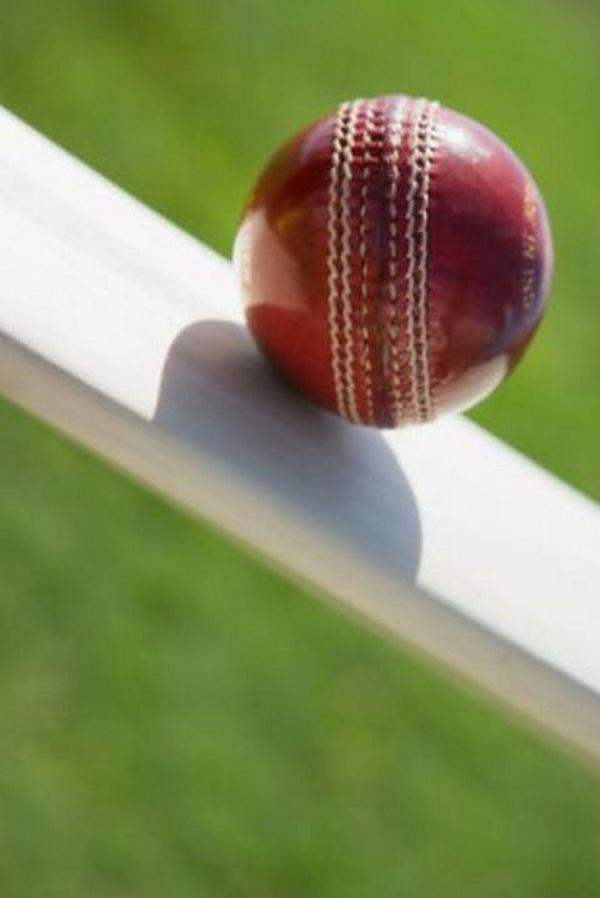 Cricket: Lymington's Cowley crashes 35-ball century in t20