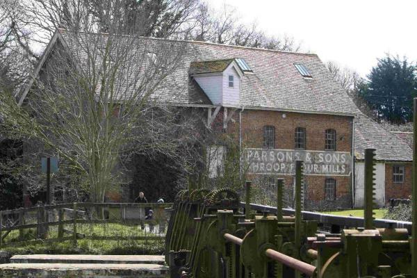 Mill rescue vetoed due to lack of cash
