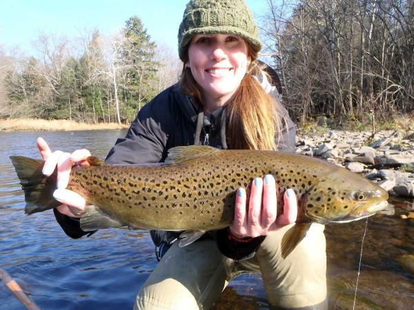 Go fish: how free fly-fishing roadshows are set to inspire would-be anglers