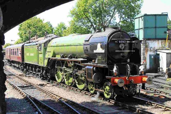 Get steamed up at gala weekend as Swanage Railway celebrates 35th anniversary