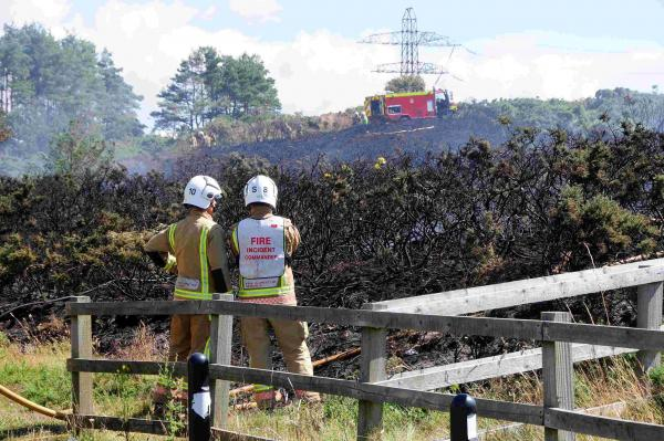 UPDATE: 40 firefighters tackle heath fire