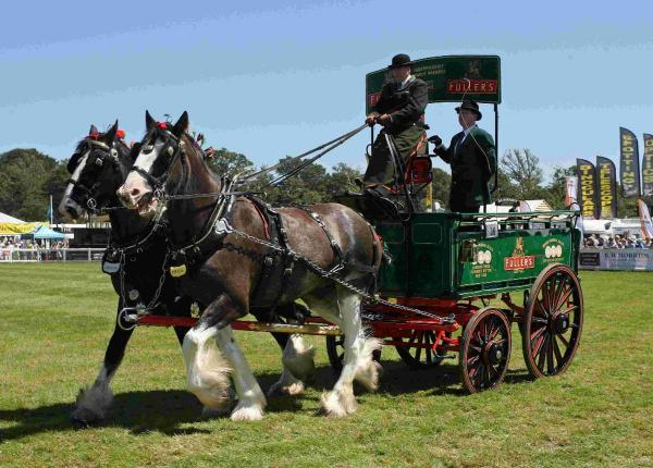 Last chance to get discounted New Forest Show tickets
