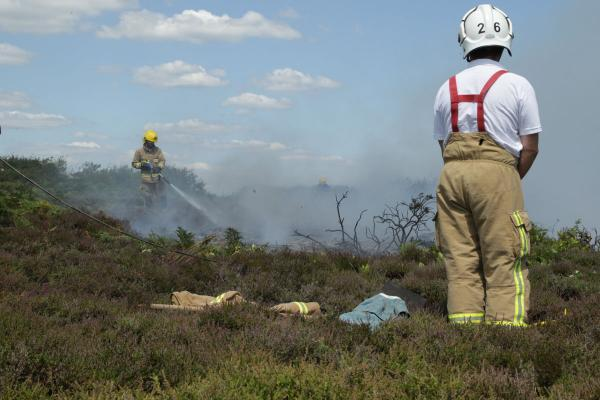 Hengistbury Head fire: could take 10 years for heathland to return to