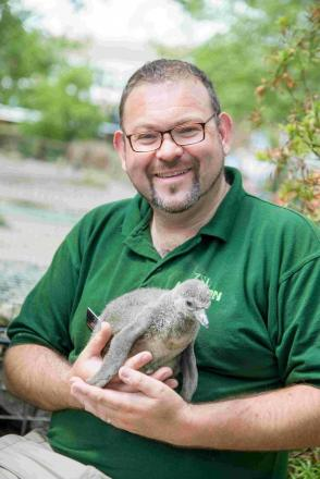 Return of the bird man: zoo keeper Adrian is back on our TV screens