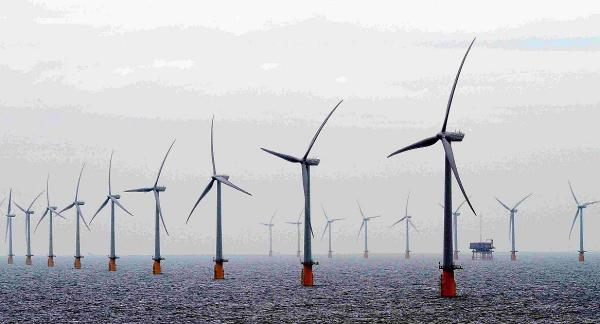 Wind farm campaigners claim they were right over development's impact