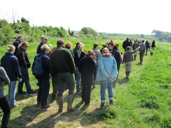 Join one of the Dorset Wildlife Trust events taking place September 6 - 14