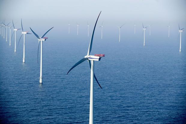 Navitus Bay wind farm plans rejected by government