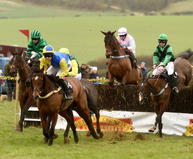 ON THE CHARGE: Milborne St Andrew saw some thrilling racing