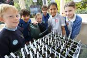 OUT OF THIS WORLD: Young pupils at Park School are growing seeds which have been to space