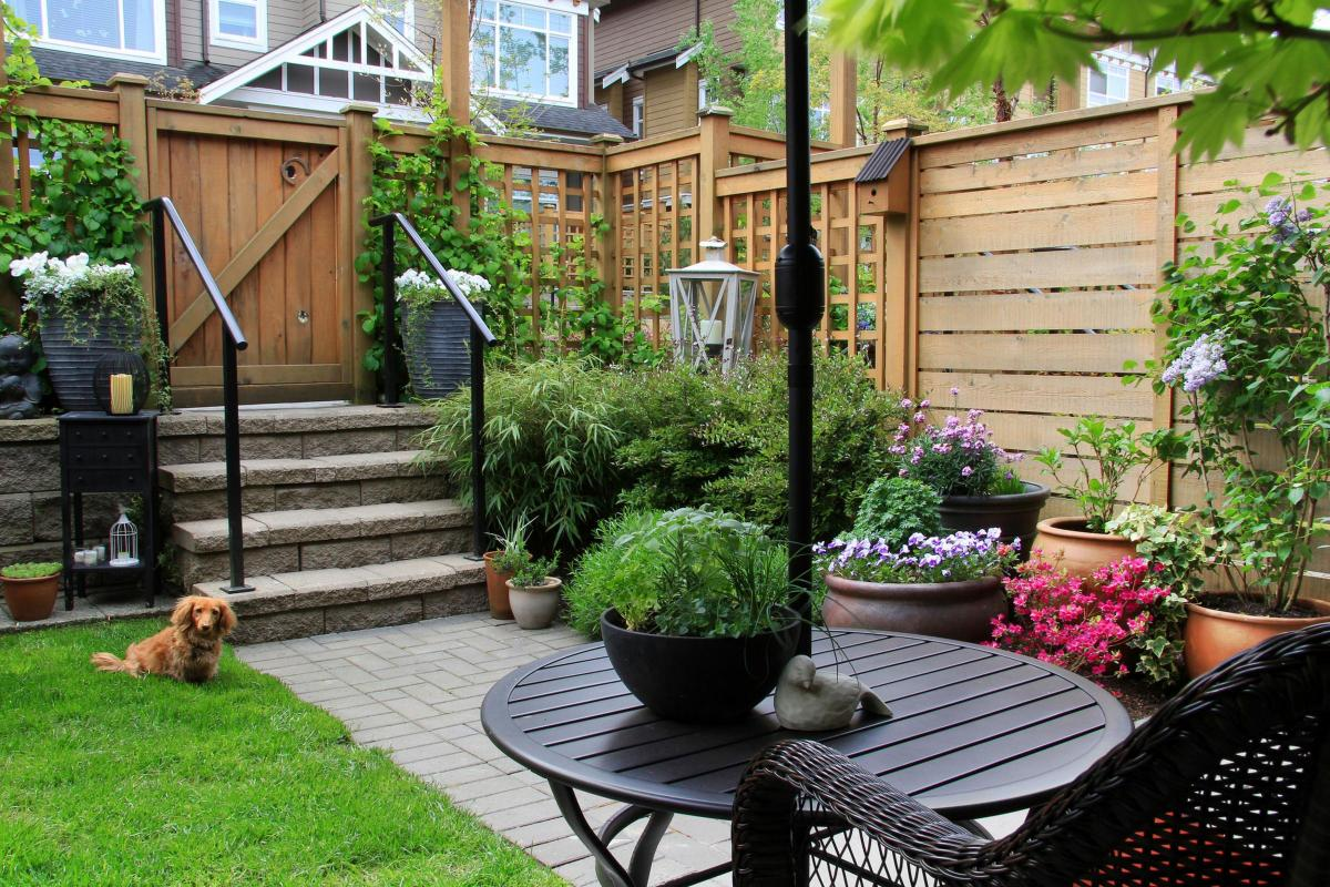 How To Give Small Gardens The Wow Factor And 10 Things To Do In