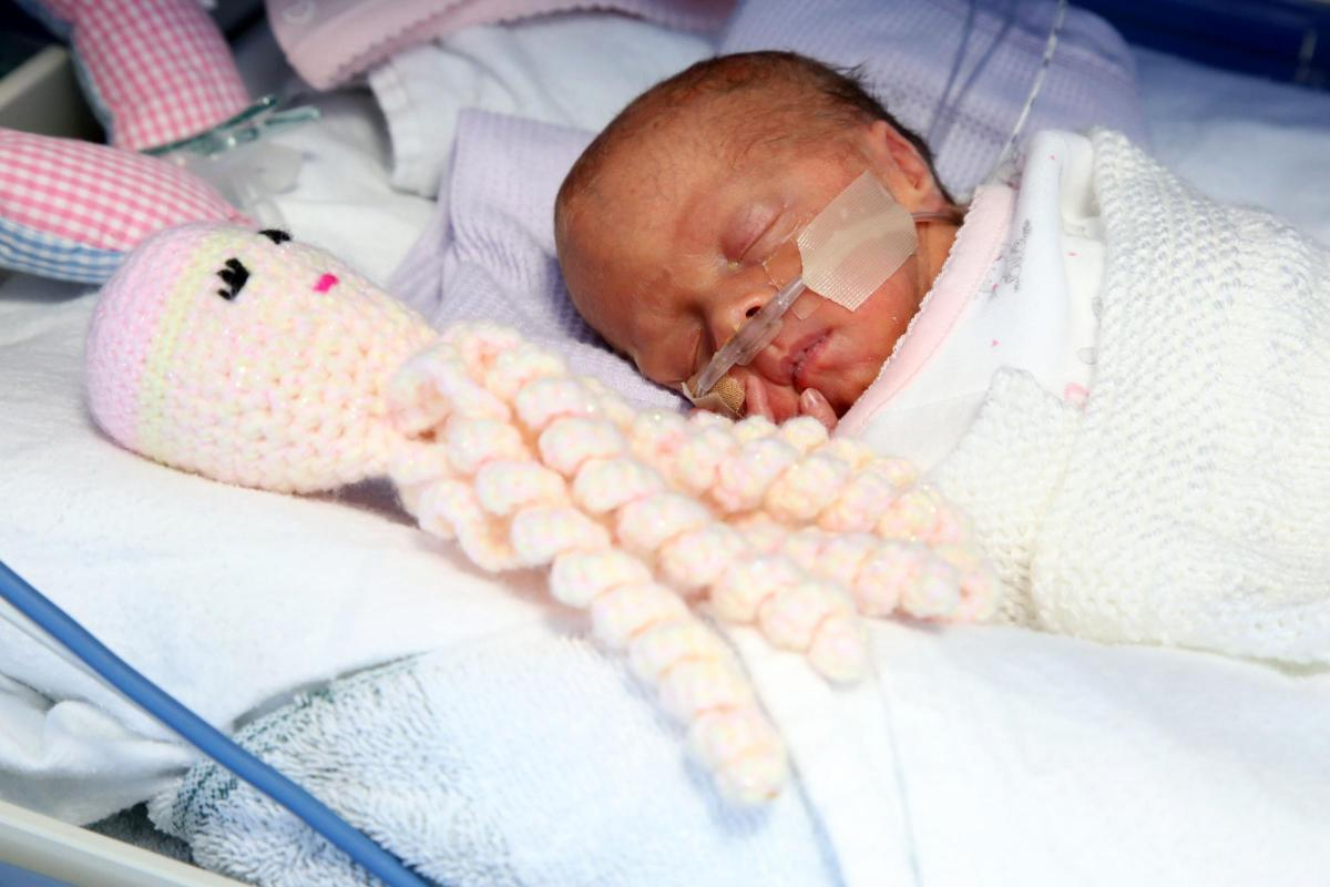 The crocheted octopuses that help tiniest babies feel safe  From