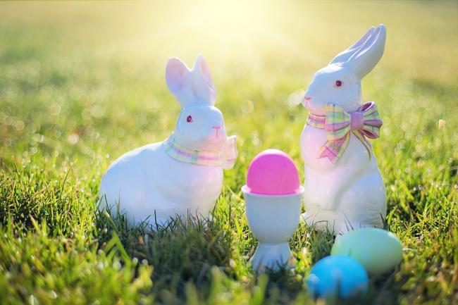 18 easter egg hunts and trails taking place across dorset and the picture via pixabay negle Image collections