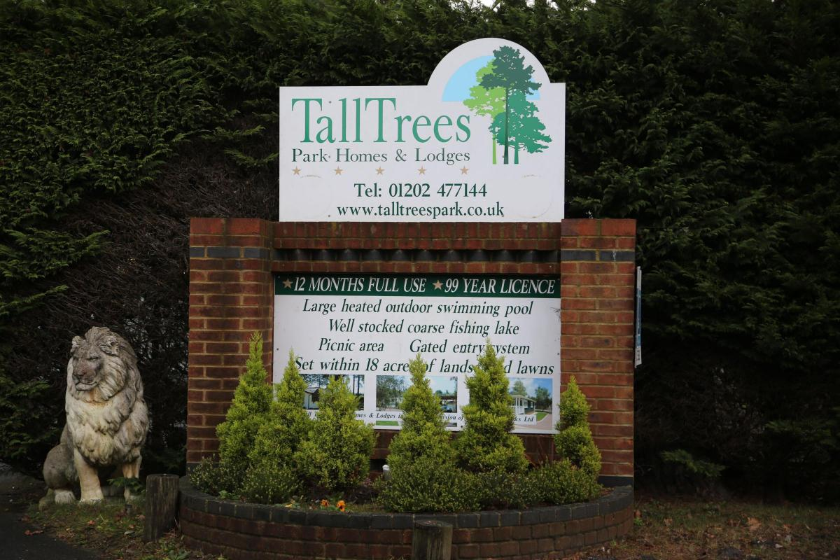 Tall Trees Residents To Find Out If They Can Stay In Their Homes All Year Round