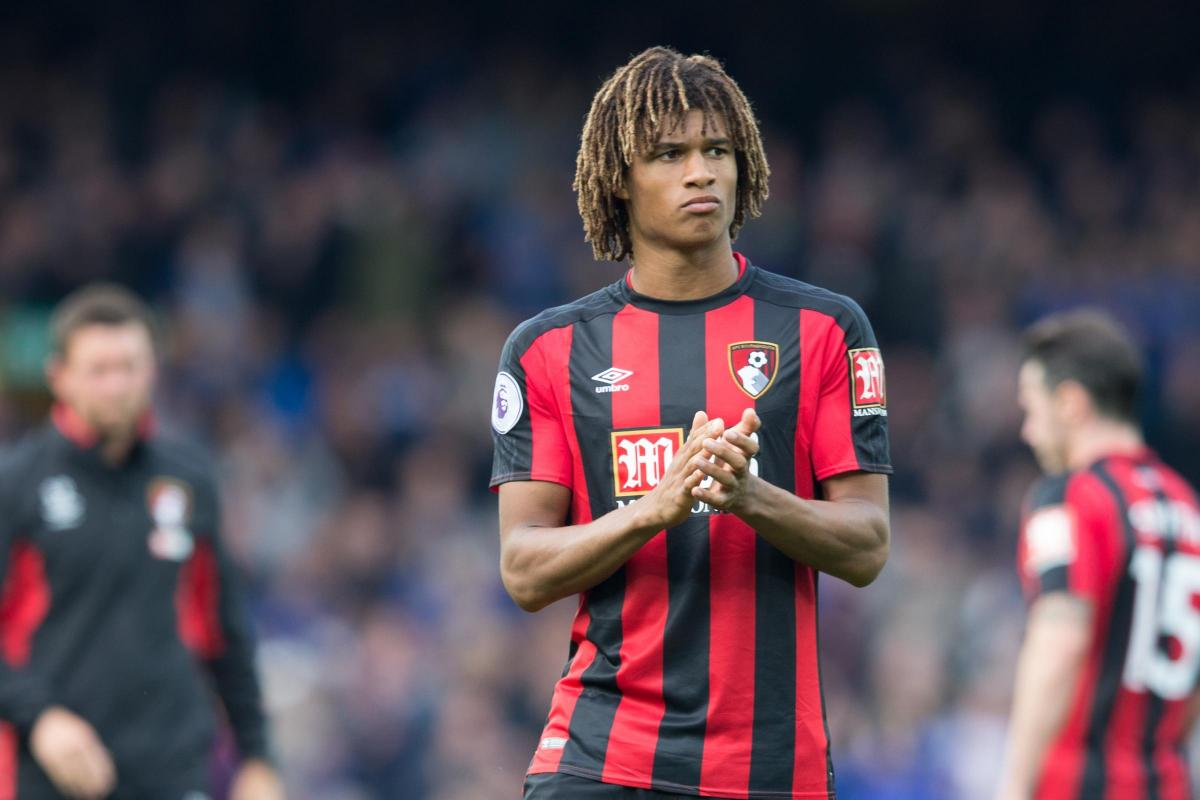 Cherries duo Nathan Ake and Asmir Begovic miss out on World Cup