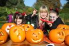 16 Halloween events taking place in Dorset this month