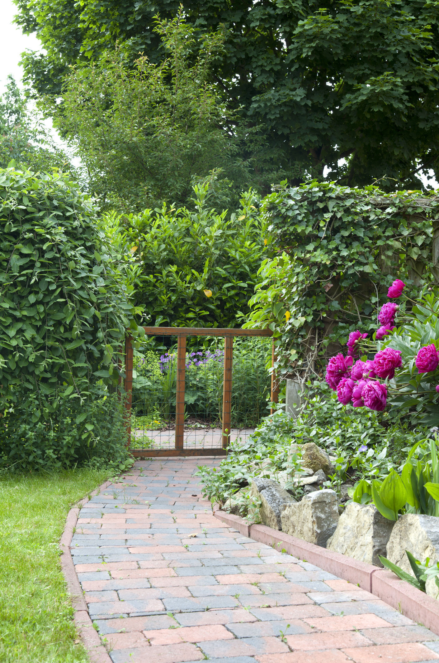 A well-maintained garden path can make all the difference