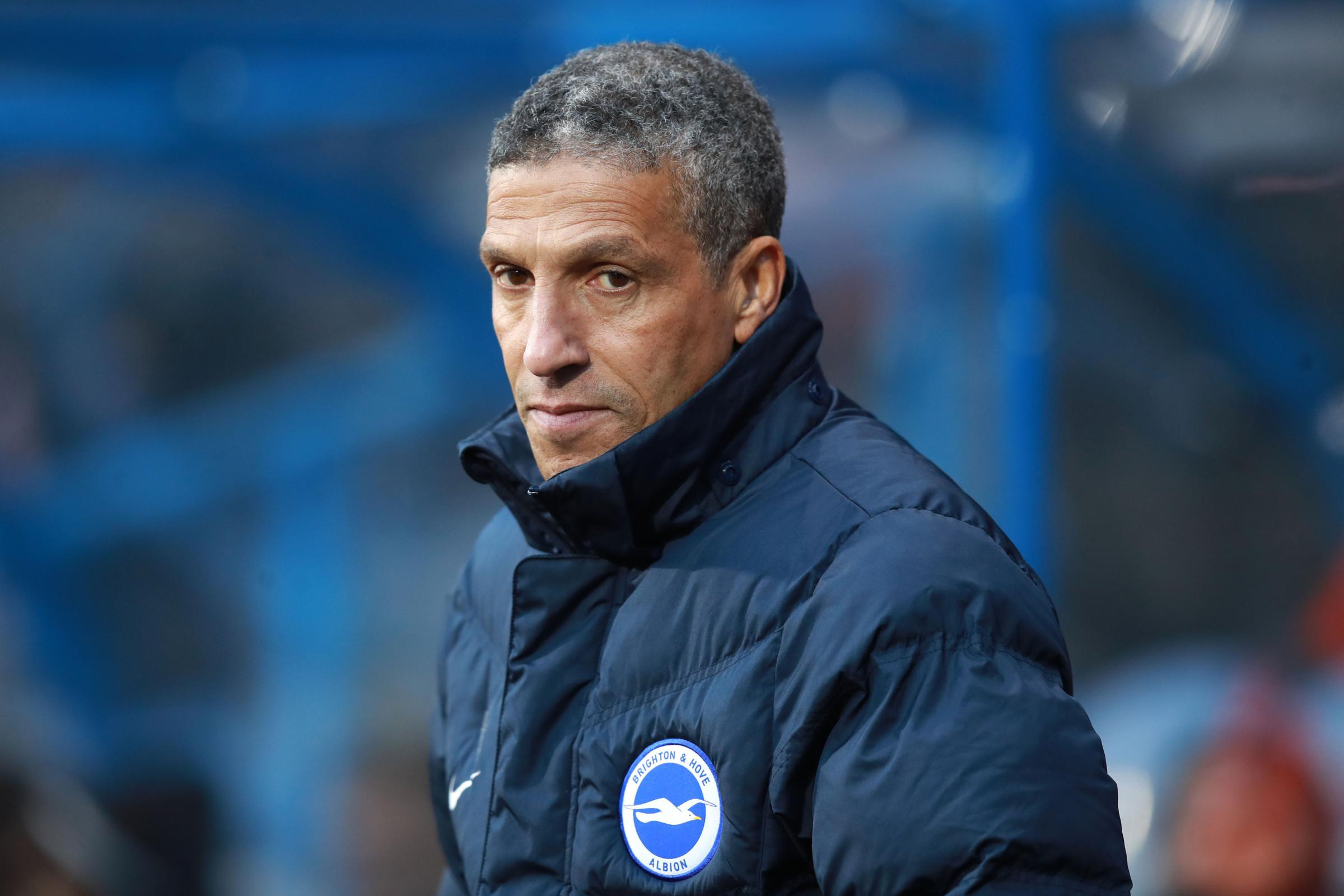 VIEWPOINT: Brighton boss Chris Hughton (Picture: Mike Egerton/PA Wire)