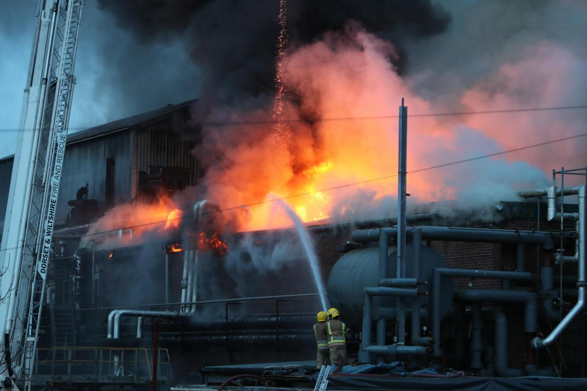 huge fire guts former hall woodhouse warehouse in blandford