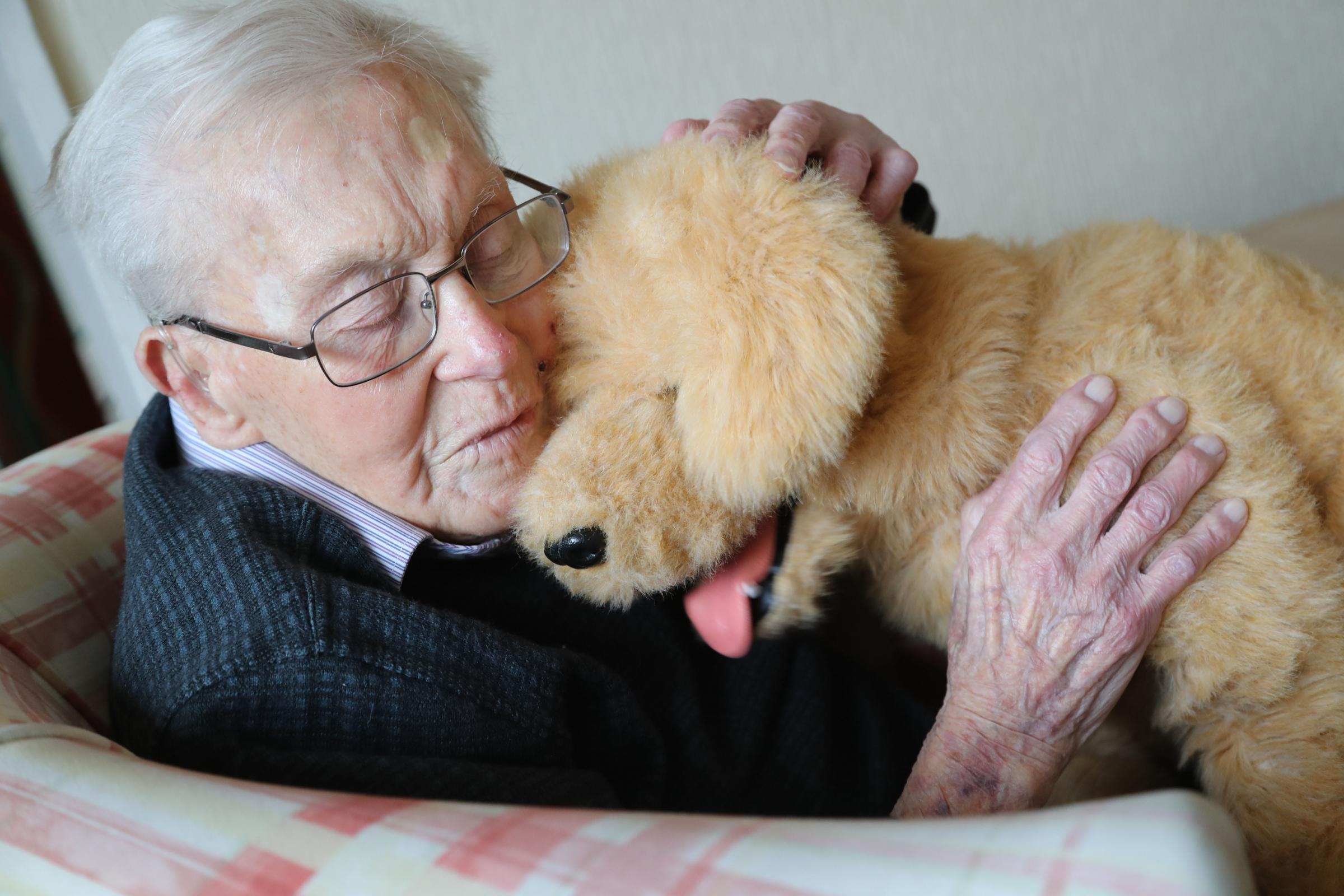WATCH: Meet Biscuit, the robotic therapy dog at a