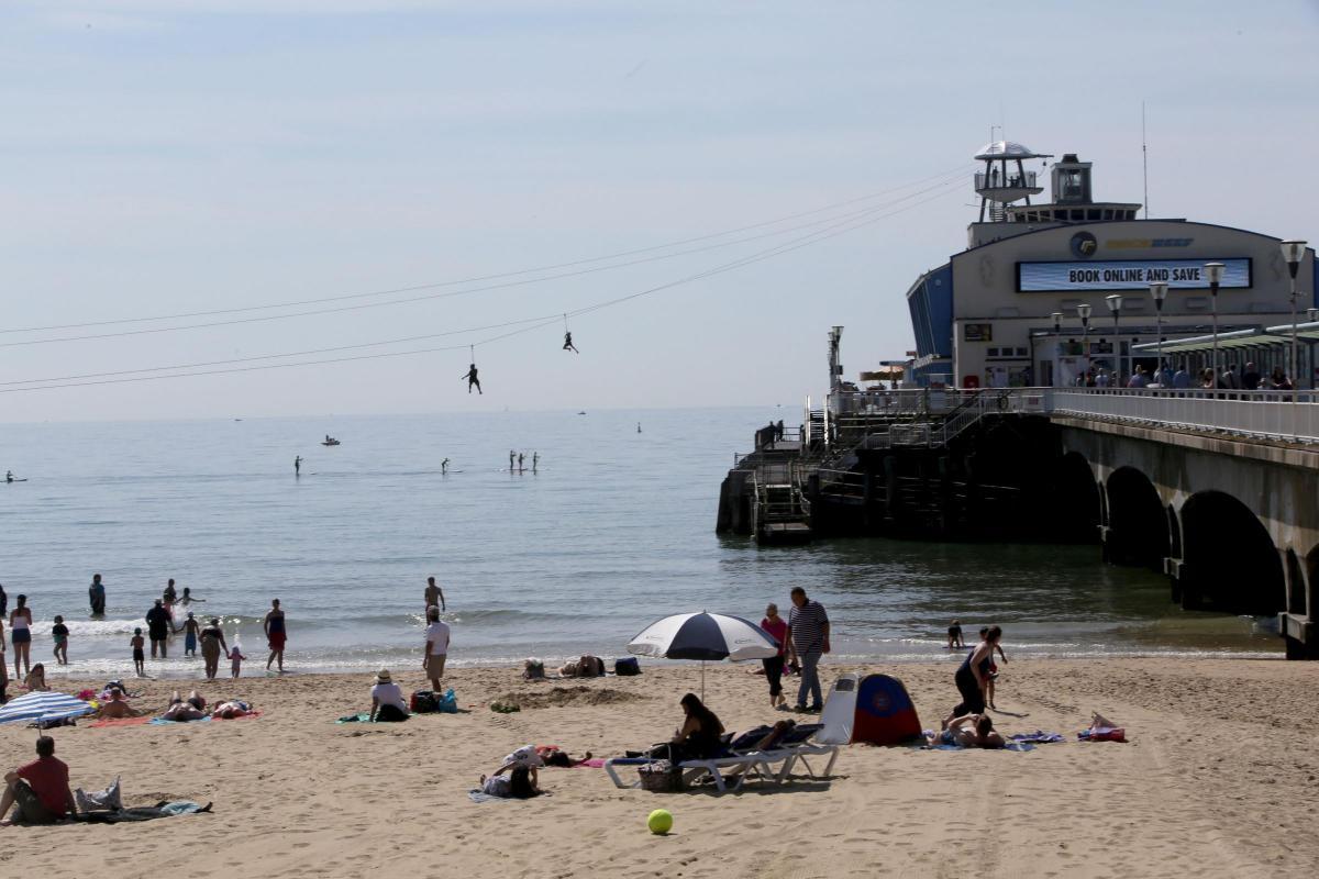 Googlebox\'s Sandra Martin to take on Bournemouth zip wire ...