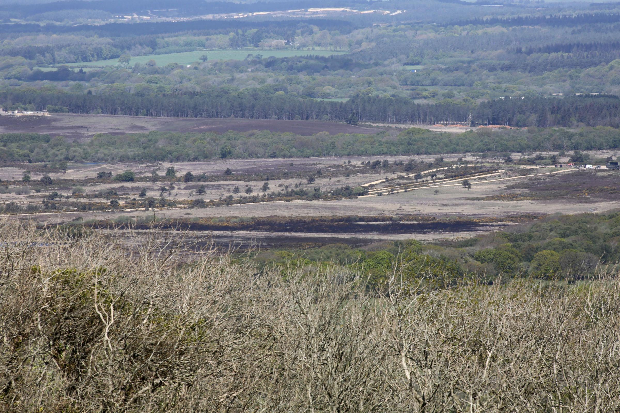 Pic - Corin Messer - 07/05/14 - cm070514purRangeFire1 .Burnt heathland at Five Tips Firing Point at Lulworth Ranges. .COPYRIGHT - BOURNEMOUTH DAILY ECHO..