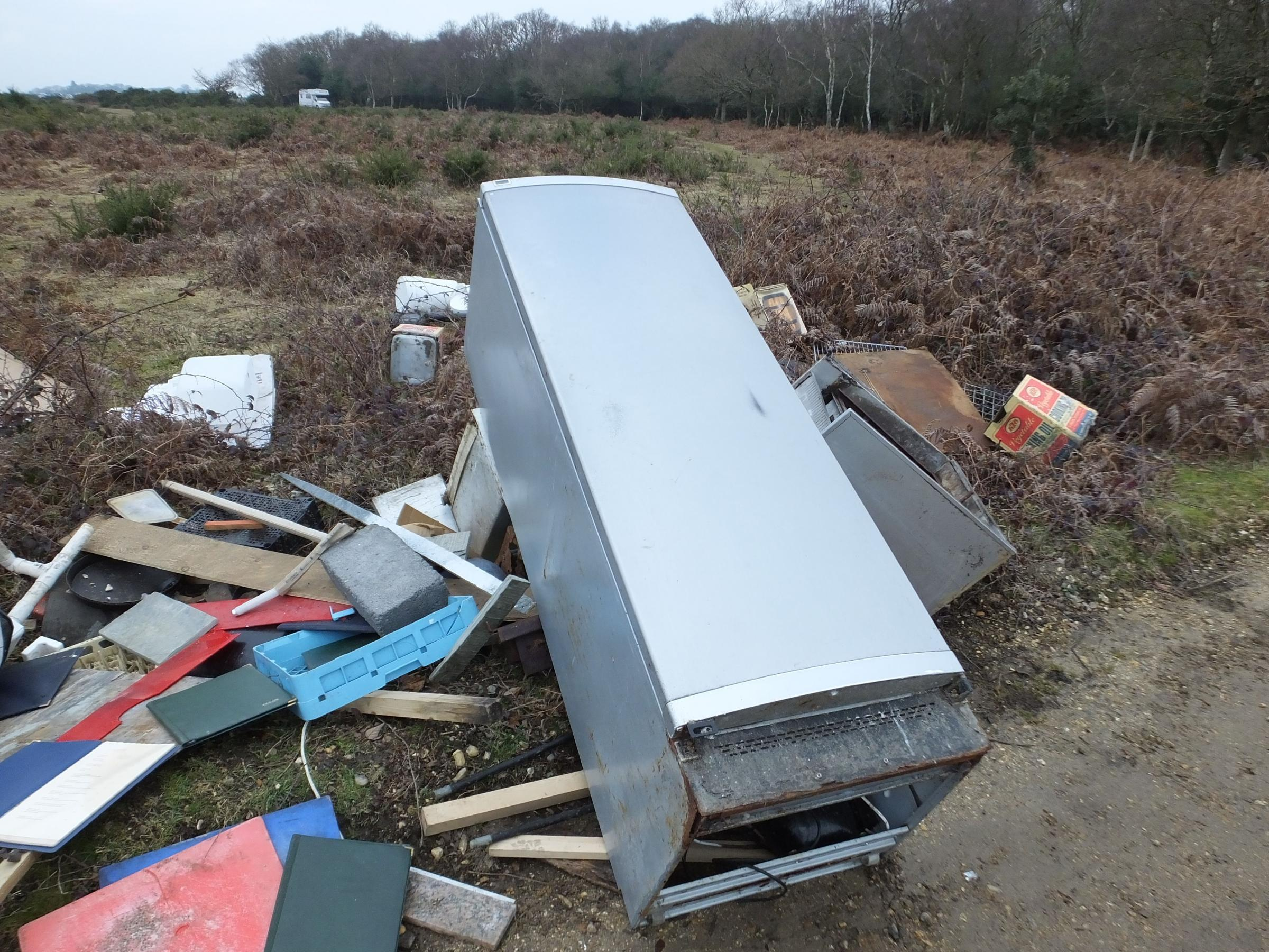 BLIGHT: Fly-tipping in the New Forest