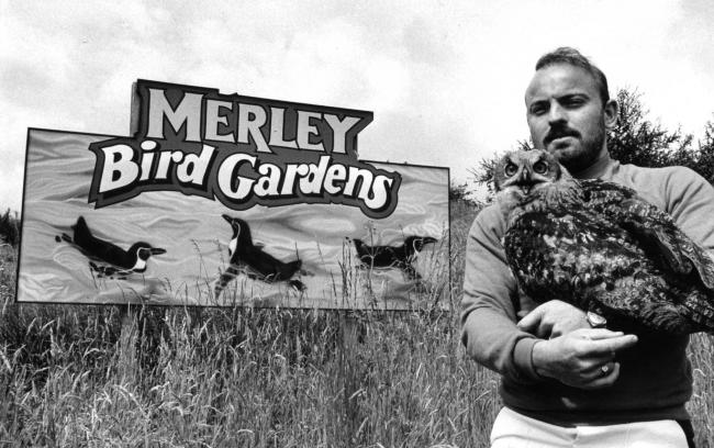 Do you remember Merley Bird Gardens?  The attraction opened in 1968 in the grounds of Merley House, near Wimborne. Consisting of exotic birds, formal gardens, shrubberies and watergardens, all set in a historic walled garden. Owner Kevin Martin is picture