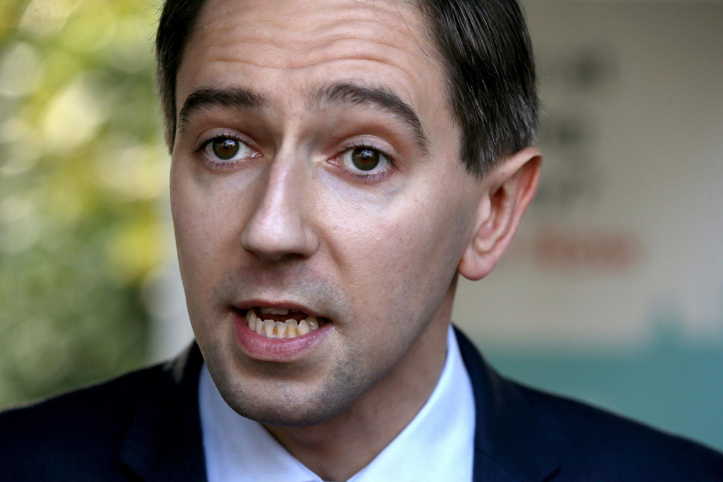 一些全科医生对爱尔兰卫生部长失去了对堕胎的信心