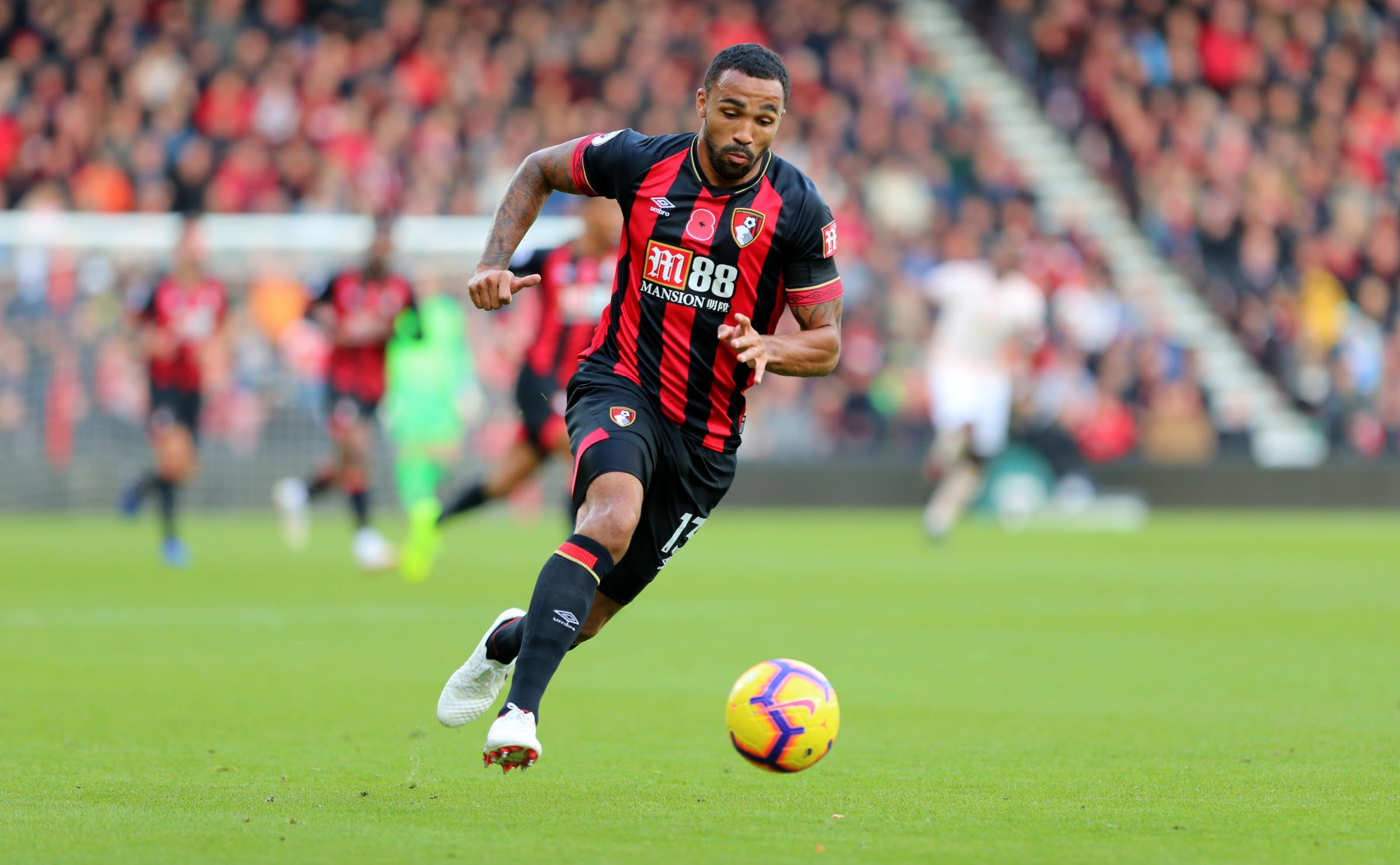 Image result for Callum Wilson