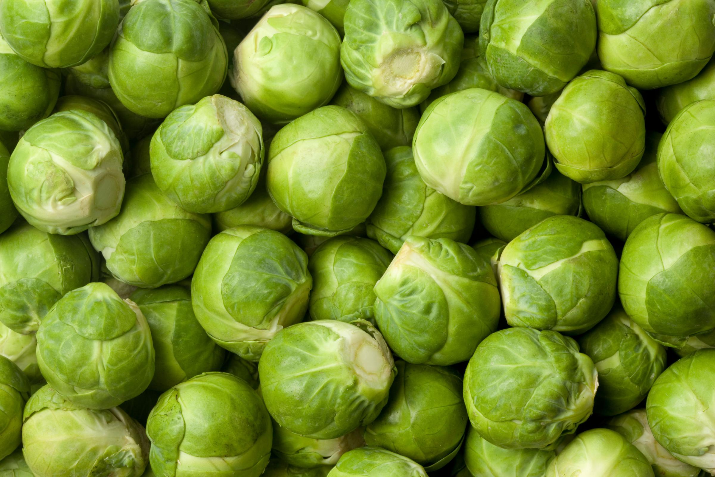 A generic photo of brussels sprouts. See PA Feature WELLBEING Sprouts. Picture credit should read: Thinkstock/PA. WARNING: This picture must only be used to accompany PA Feature WELLBEING Sprouts