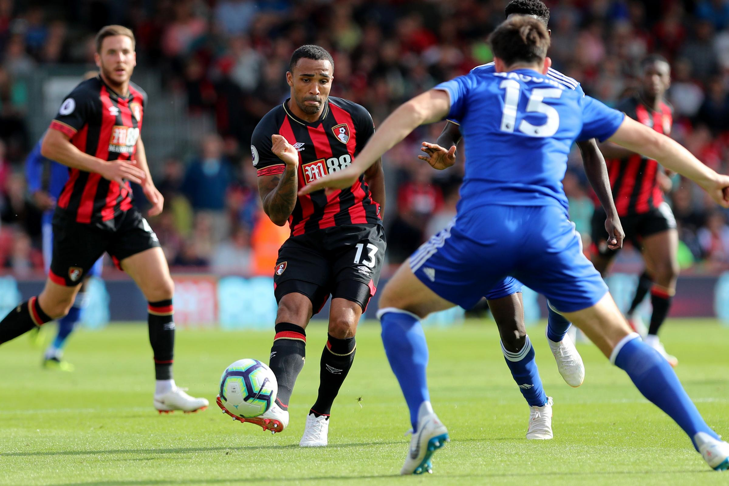 Cherries stars being acknowledged and recognised by England, says striker Wilson