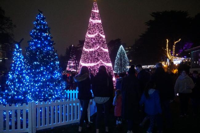 Christmas Tree Wonderland Bournemouth Coastal Bid.Pictures Christmas Tree Wonderland Opens In Bournemouth