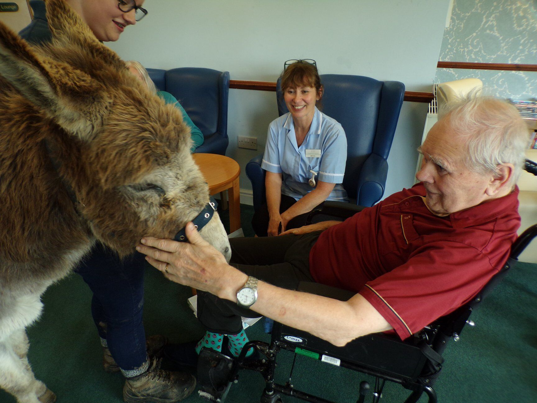 Residents at Blandford Grange care home enjoying a visit from Jasmine the donkey