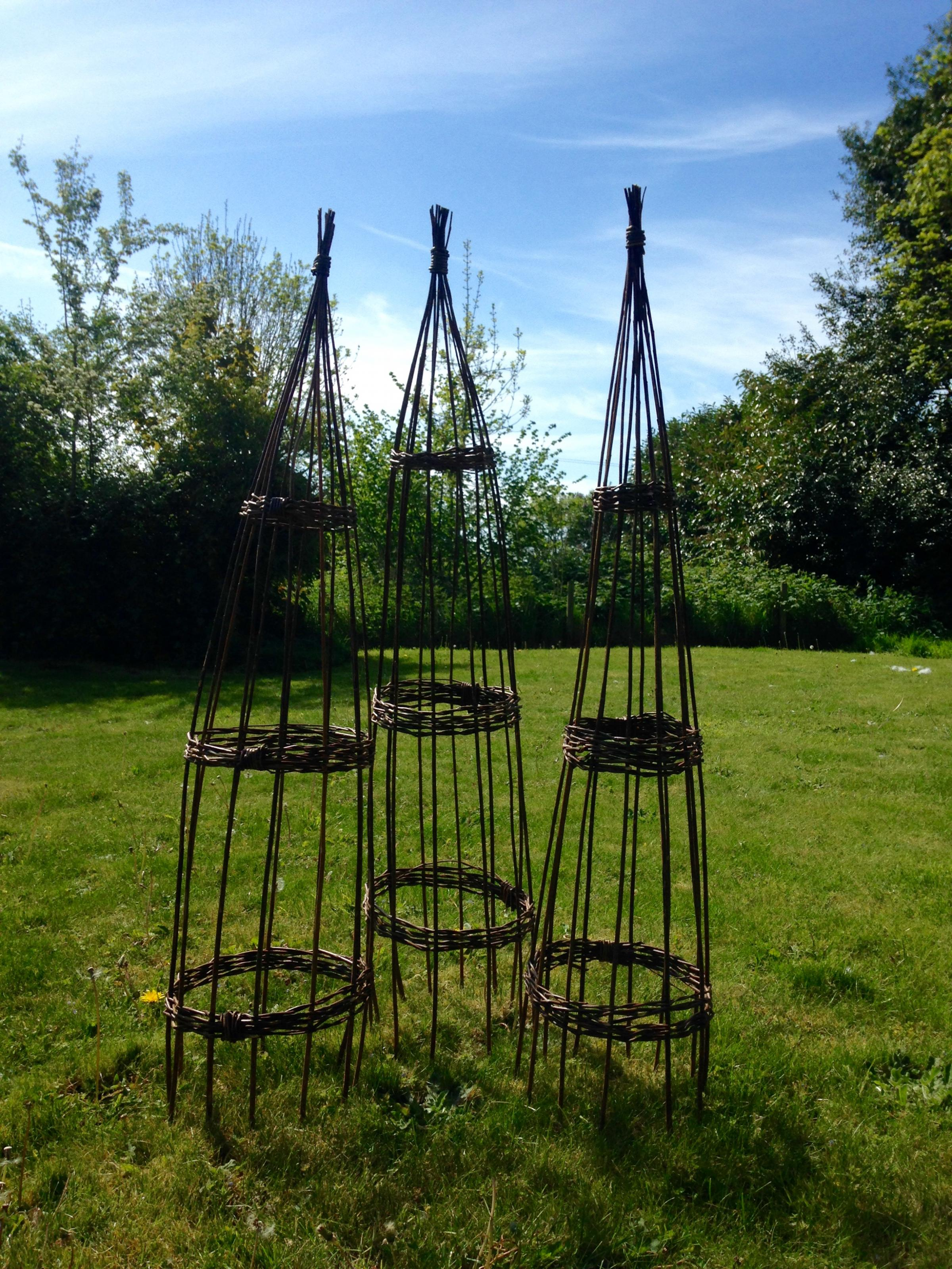 Saturday Special; Willow workshop - plant climbers with Tracy Standish