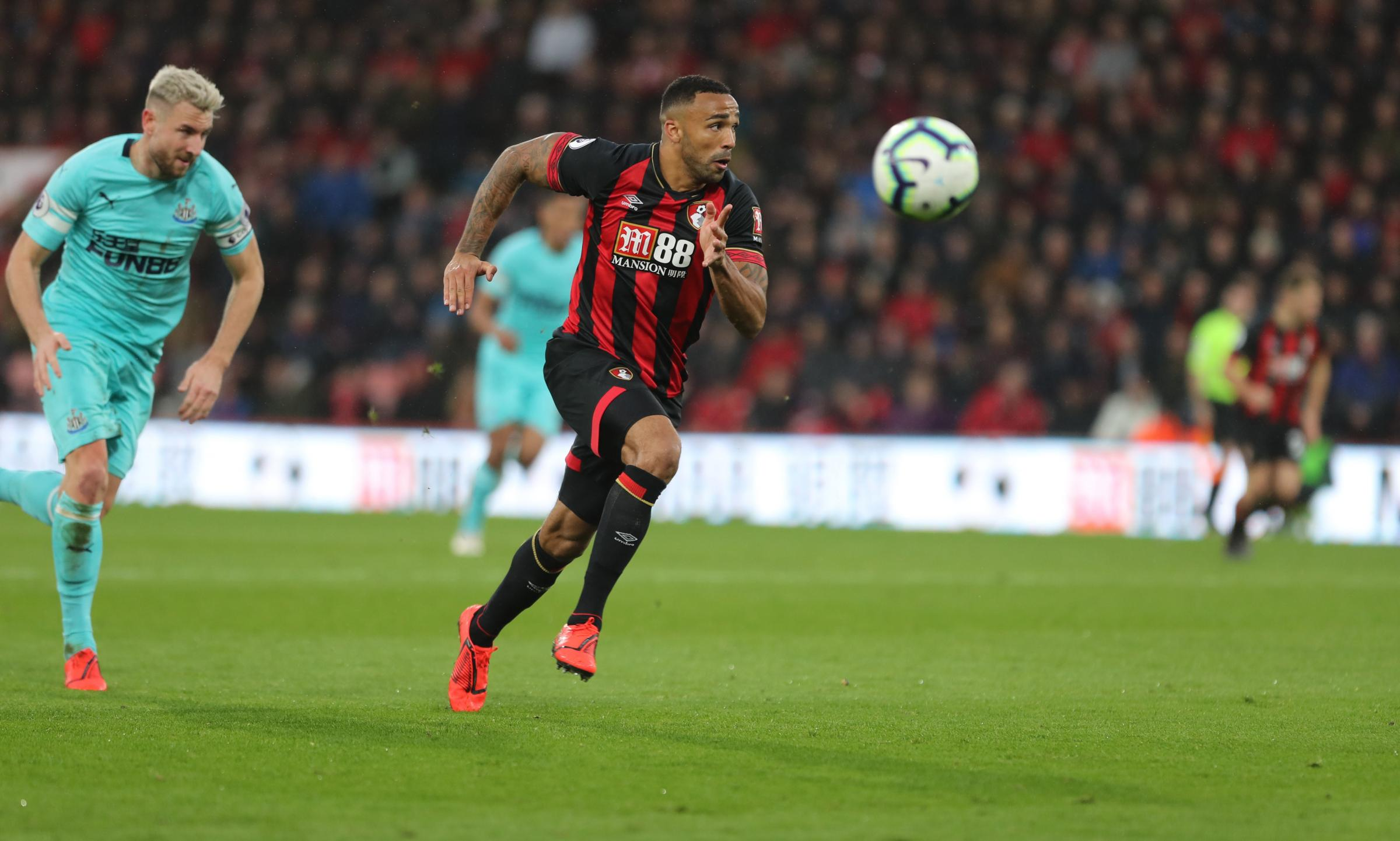 Everton plan £35million swoop for AFC Bournemouth ace Callum Wilson, claims report