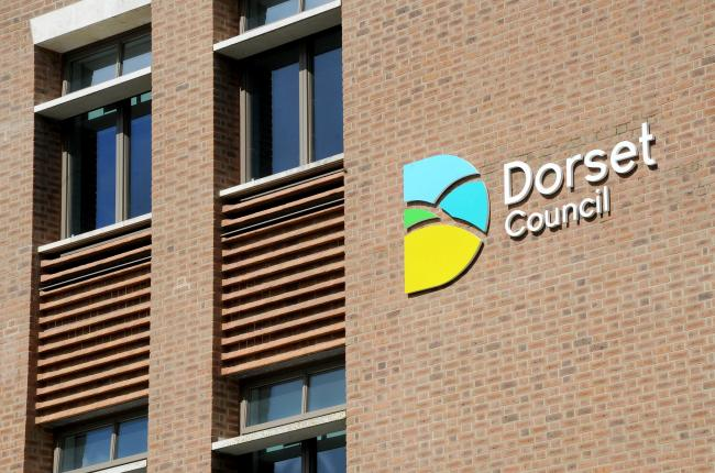 New Dorset Council logo